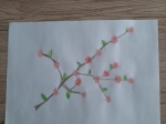 Kwitnąca-gałązka-Weronika-W.-Tygryski